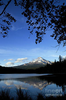 Charmian Vistaunet - Beautiful Mt. Hood and Lake