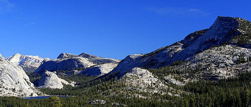 Lynn Bawden - Beautiful Sierras