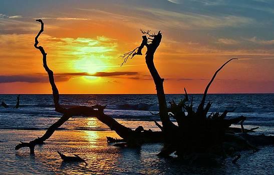 Paulette Thomas - Beautiful Sunrise