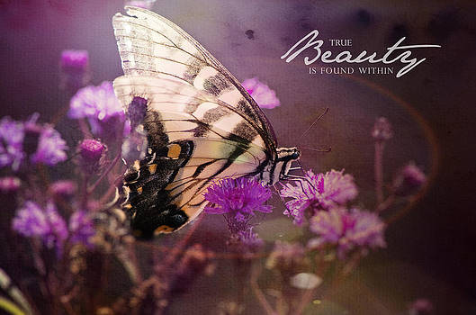 Beauty by Kathy Jennings