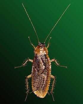 Bedazzled Roach by R  Allen Swezey