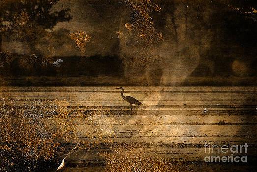 Bird 9 by Gianmario Masala