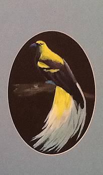 Bird of Paradise by Catherine Swerediuk