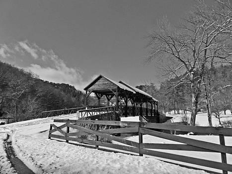 Black and White Bridge by Regina McLeroy