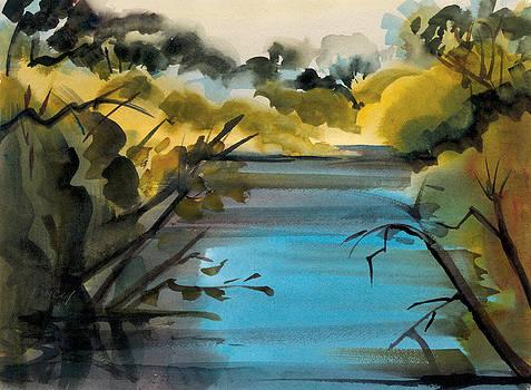 Blue Lake by Pat Percy