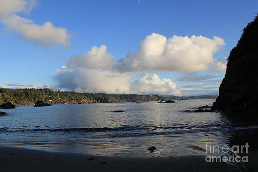 Blue Reflections by Denise Lowery
