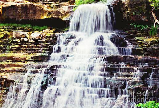 Rachel Barrett - Bradywine Falls