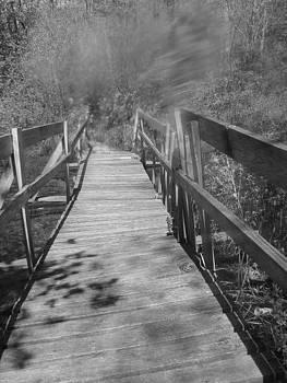 Broken Bridge by Michelle Lawrence