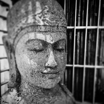 Buddha Head Miami Beach Florida by Bradley R Youngberg