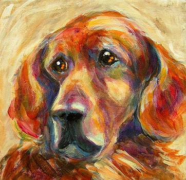 Buddy by Judy  Rogan