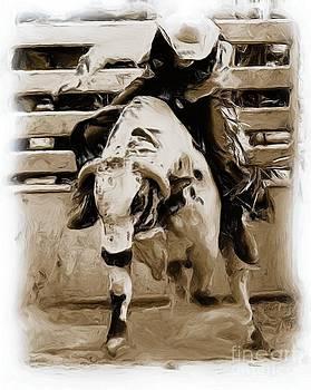 Roland Stanke - Bull Rider