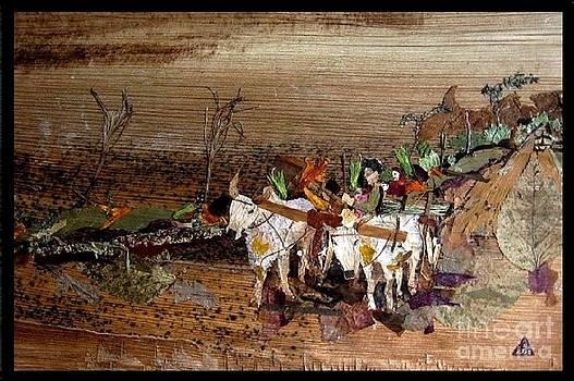 Bullock cart by Basant Soni