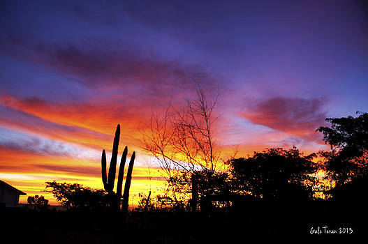 Cabo sunrise 2 by Galo Teran