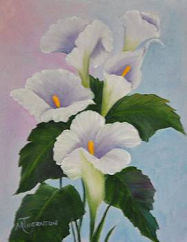 Calla Lily by Marsha Thornton
