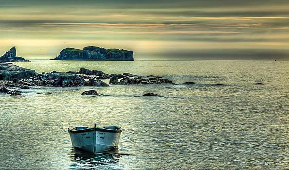 Calm Morning by Adam Dove