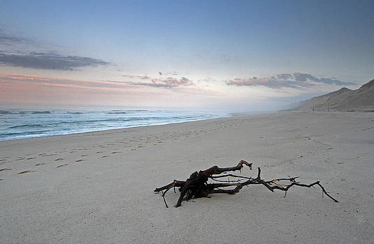 Juergen Roth - Cape Cod National Seashore