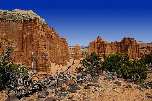 Capital Reef by Donald Fink