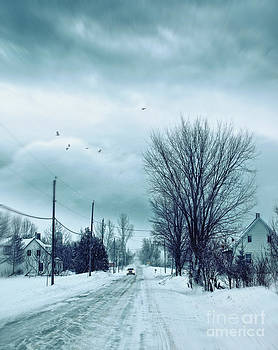 Sandra Cunningham - Car coming in the distance on a snowy winter road