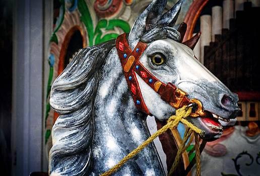 Carousel Horse by Cheryl Cencich