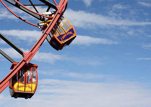 Carousel Twist by David Nicholls