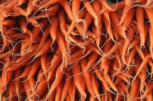 Harold E McCray - Carrots