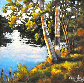 Catching the Evening Sun by Eileen  Fong