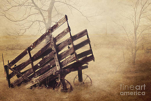 Cattle Chute by Pam  Holdsworth