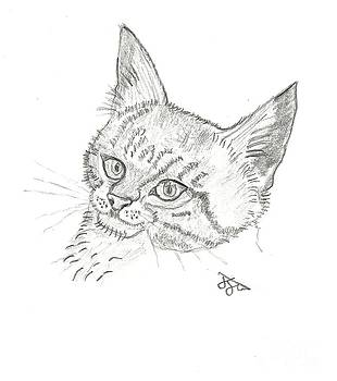 Charlie the Cat by John Williams