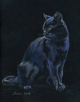 Chat Noir by Jana Goode