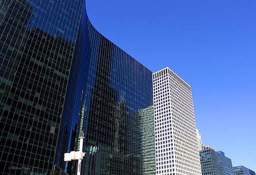 Milena Ilieva - Chicago Buildings