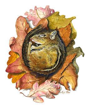 Chipmunk Hibernation by Insil Choi