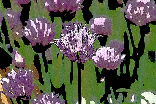 Chives by Rick Thiemke