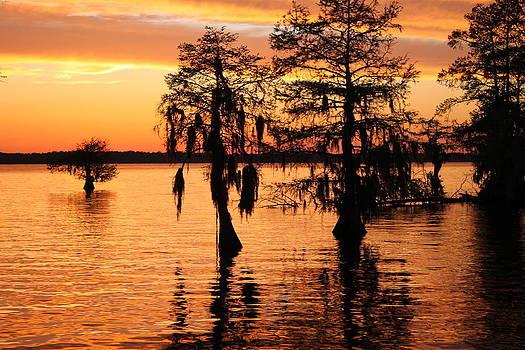 Chowan River Sunset by Carolyn Ricks