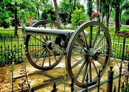 Civil War Cannon by Robert Partridge