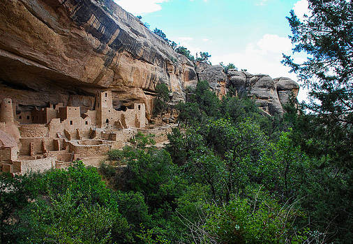 Cliff Palace - Mesa Verde by Dany Lison