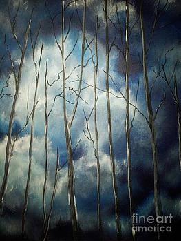 Cloudy Skies by Erik Axebrink