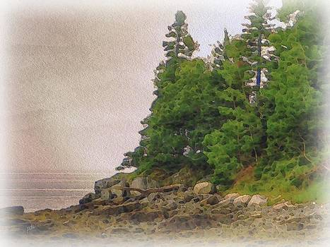 Coast by Philip White