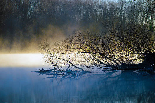 Cold River by Timothy Thornton
