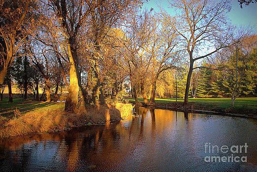 Coplay Creek Shadows Series by M Hess