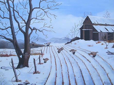 Cornfield by Glenda Barrett