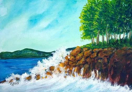 Crashing Wave by Catherine Jeffrey