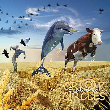 Douglas Martin - Crop Circles Explained