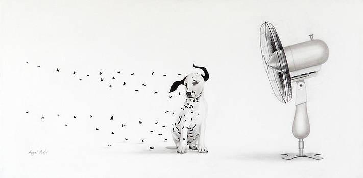 Dalmita V by Angel Ortiz