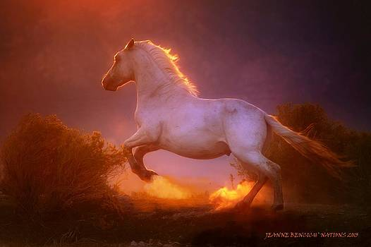 Dance Of The Wild Stallion  by Jeanne  Bencich-Nations