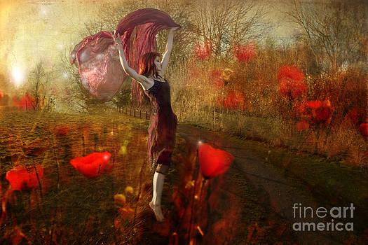 Angel  Tarantella - dancing on the poppy field