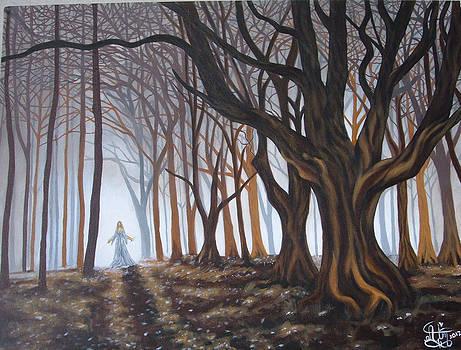 Dark Forrest by Annette Jimerson