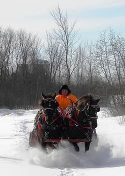 Peggy  McDonald - Dashing through the Snow