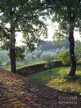 Alessandra Di Noto - Dawn in Loppiano