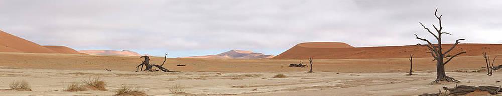 Deadvlei panorama  by Grobler Du Preez