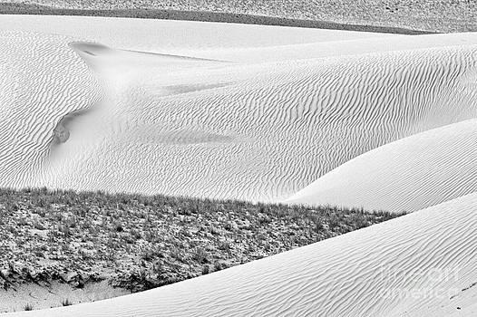Desert abstract by Hitendra SINKAR